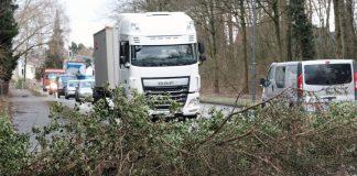 """Orkantief """"Sabine"""", das seit Sonntag über NRW hinweg gezogen ist, hat bislang vergleichsweise moderate Schäden angerichtet."""